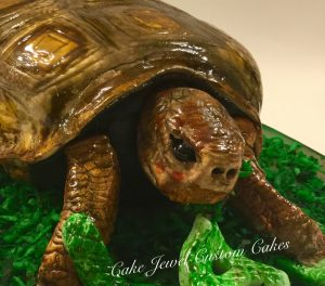 3D Sculpted Turtle Cake