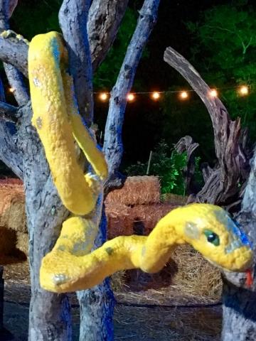 Yellow Tree Snake Cake
