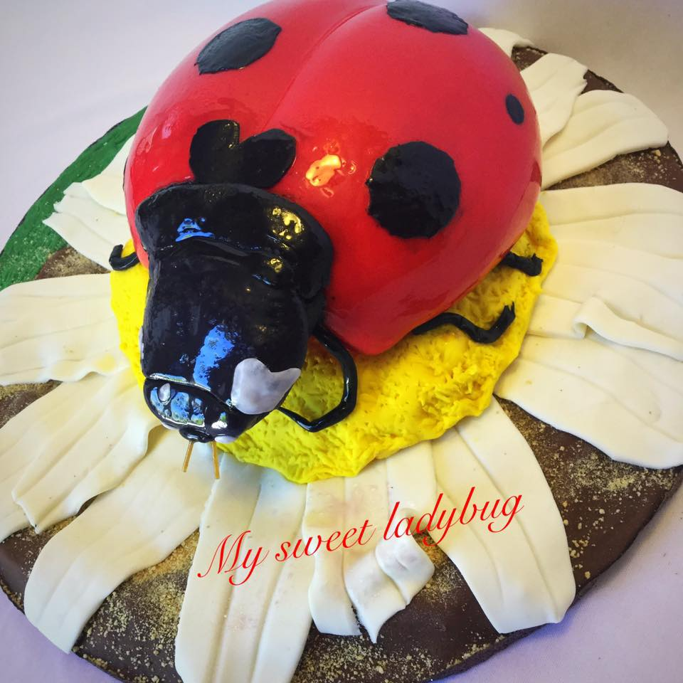 Sweet Ladybug Cake with fondant and Rice cereal treat flower